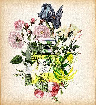 Nostalgic Art - Chanel No. 5 Perfume Notes