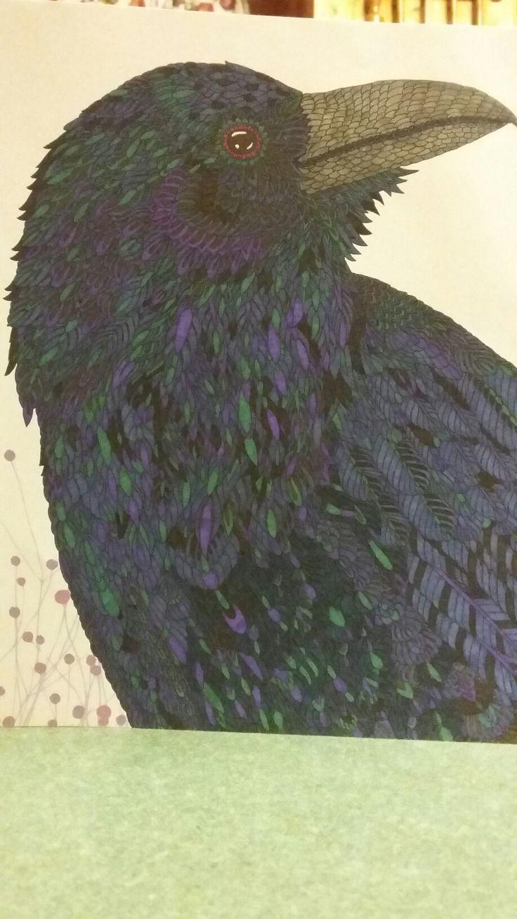 Animal kingdom coloring book gorilla - Tammy S Raven