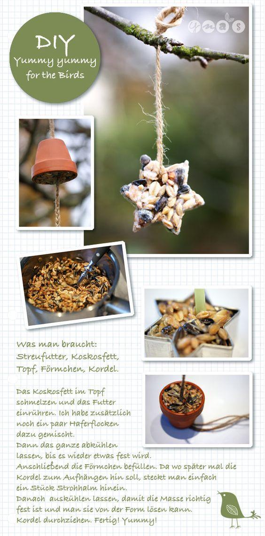 DIY Vogelfutter, Meisenringe:
