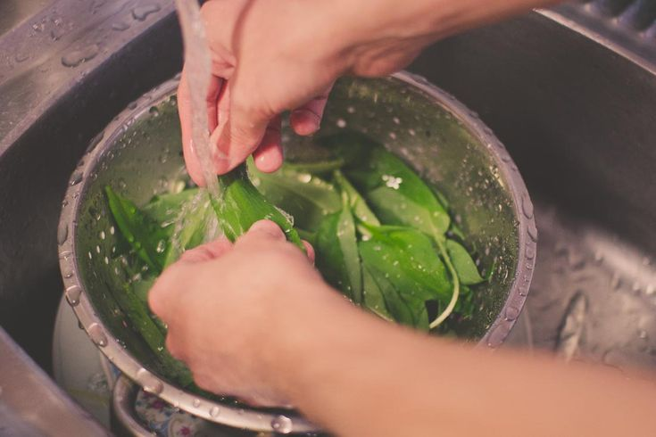 Clean the wild garlic leaves #wildgarlic #cleaning #leaves