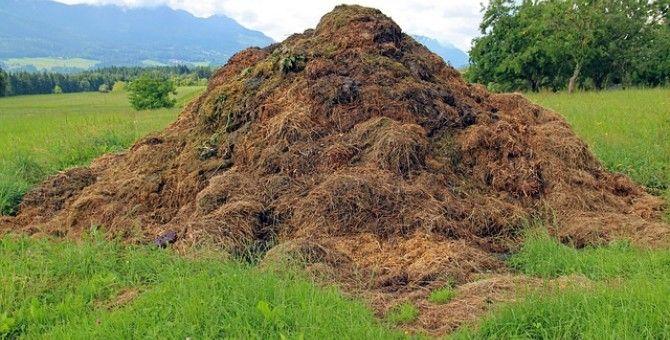 Composting, 02