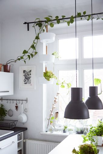 Hang vertical planters from the curtain rail to give your plants plenty of sunlight and decorate the window too.