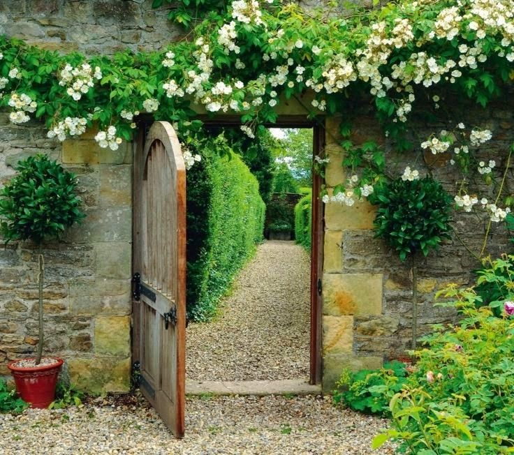 Garden wall and door with climbing roses