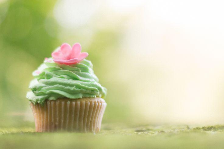 cupcake from wonderland