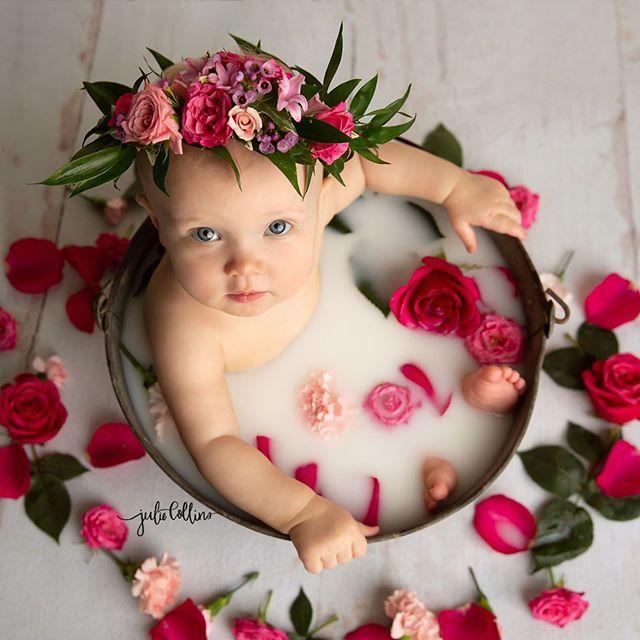 Six Month Baby Girl Milk Bath Photo Session In Studio Flower Crown Julie Collins Photography Oconomowoc Baby Month By Month Baby Milk Bath Milk Bath Photos