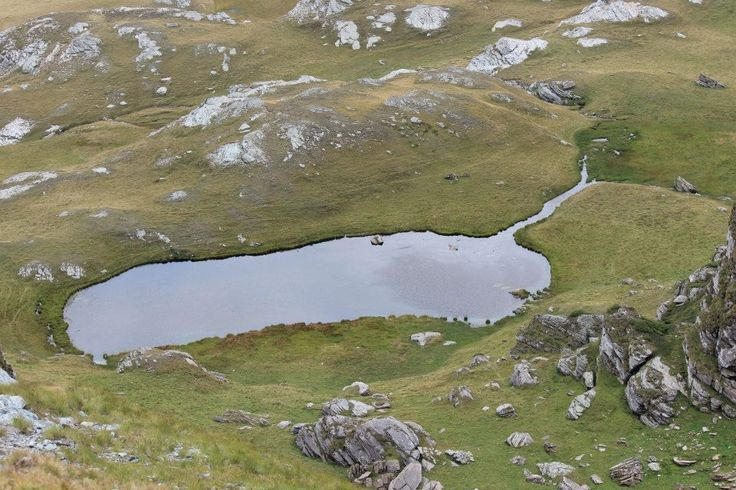 Little lake at the top of Transalpina road