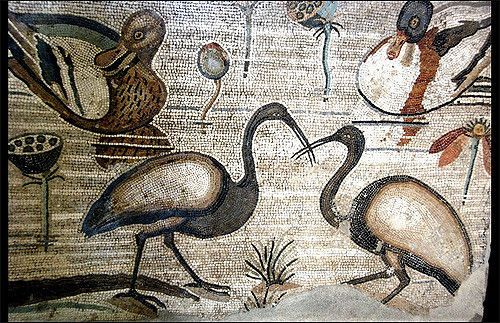 Museo Archeologico Nazionale, Naples | Roman mosaic work in ancient Pompeii |  Archaeological Museum, Naples, Italy (All photo's in my photostream are made without flash)
