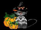Best Halloween Stories