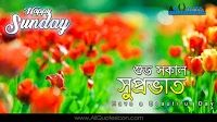 Happy Sunday Images Best Good Morning Quotations Greetings in Bengali Pictures for Friends Whatsapp Images Online Bengali Quotes