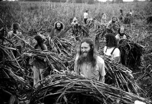 Comuna agrícola