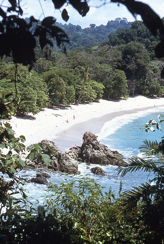 Costa Rica |The National Park of Manuel Antonio