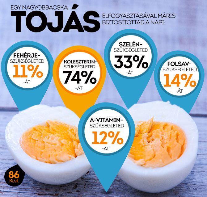 """Feldobjuk fehér, leesik sárga. Mi az? Mindenki ismeri ezt a klasszikus találós kérdést, naná, hogy a tojás! Nézzük meg most egy kicsit alaposabban is """"belülről""""! http://www.nosalty.hu/ajanlo/feldobjuk-feher-leesik-sarga-mi"""