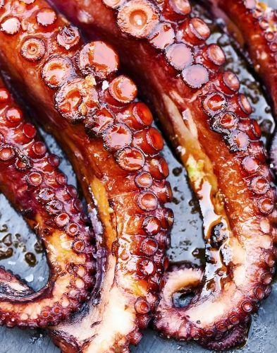 Les 25 meilleures id es de la cat gorie bocaux de poissons for Nourriture poisson rouge longue duree
