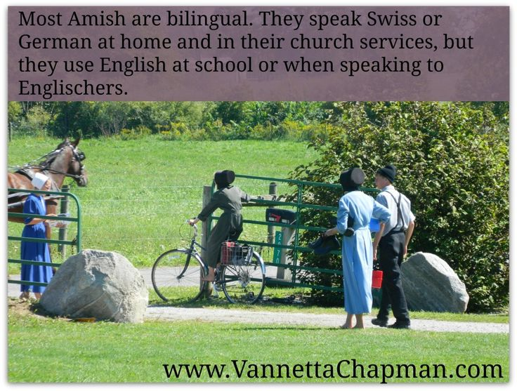 best bonnets and buggys images amish  amish language