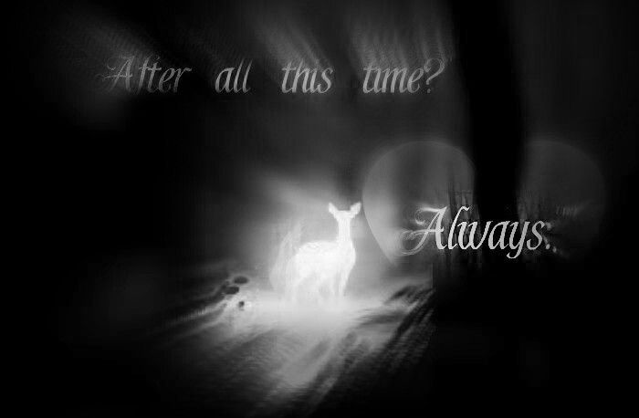 Edited by me!:-)  ♥that quote  #hp #severus snape