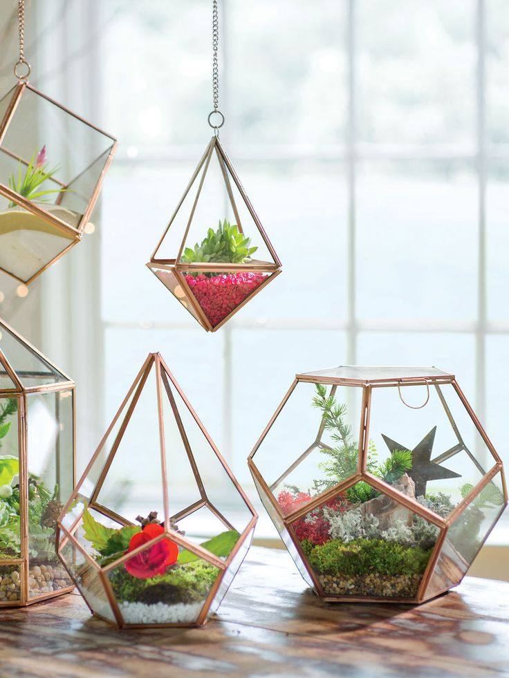 Prism Hanging Terrarium. These would be nice to add in kitchen to add both a…