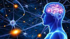 Es gibt einen einfachen Grund, warum wir immer wieder unangenehme Situation erleben. Durch ständiges negatives Denken trainieren wir unser Gehirn dazu, die Welt als negativ und schwierig zu sehen, auf diese Weise erschaffen wir diese unangenehme Situationen oft unbewusst selbst. Bilder: © pankajstock123 / © adimas Fotolia.com Das Gehirn ist ein äußerst flexibles Organ, das darauf ausgelegt ist, sich an