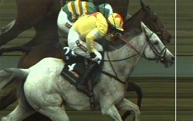 Grand National 2012: a day of drama and despair at Aintree as Neptune Collonges wins race by a nose from Sunnyhill Boy.