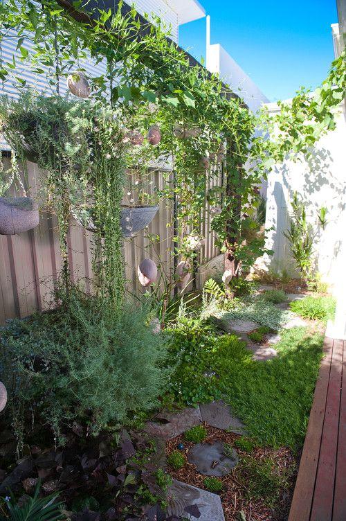 Vertical Garden Ideas Australia 128 best garden / outdoors images on pinterest | australian native
