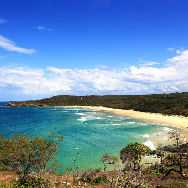 The stunning coastline of Alexandria Bay! This spectacular beach is one of many found along the headland of the Noosa National Park.
