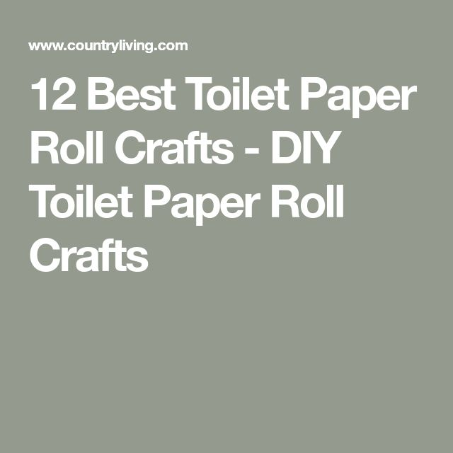 12 Best Toilet Paper Roll Crafts - DIY Toilet Paper Roll Crafts