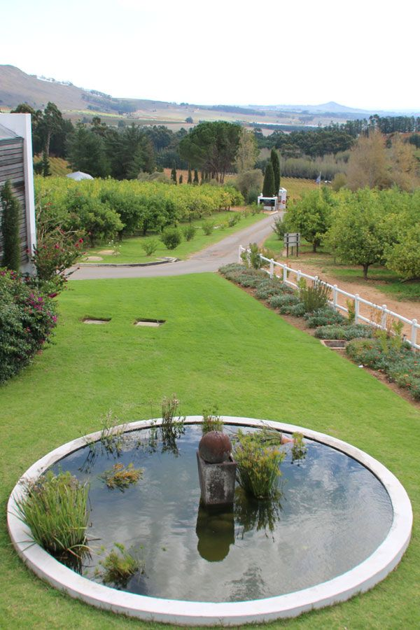 Marianne Wine Estate in Stellenbosch is a hidden gem, the wines are outstanding and it is child friendly :)