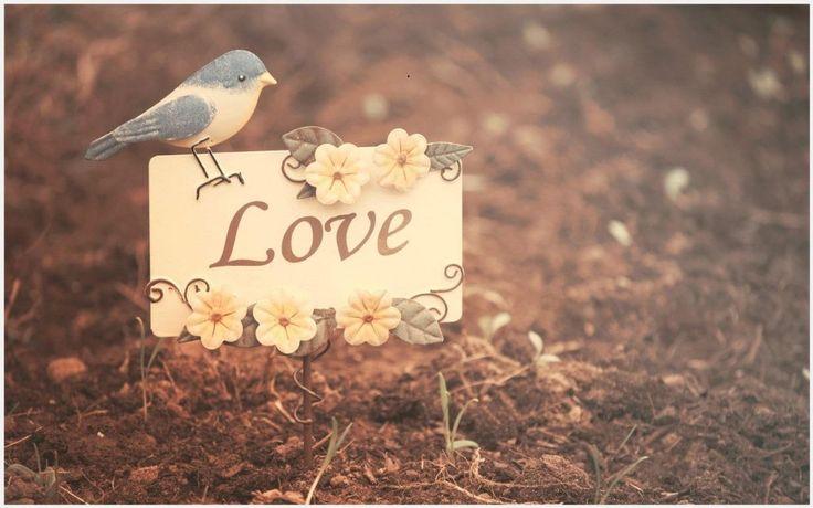 Cute Love Background Wallpaper | cute love background wallpaper 1080p, cute love background wallpaper desktop, cute love background wallpaper hd, cute love background wallpaper iphone