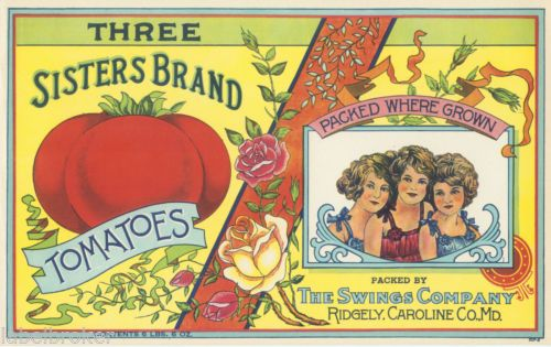 Case Label Vintage 1920s Three Sisters Tomatoes Ridgely Caroline County Maryland | eBay