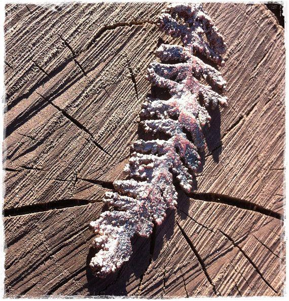 Electroplating leaves silver leaf natural leaf copper leaf