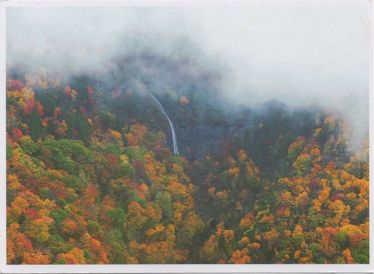 US-4900906  - Arrived: 2017.10.02   ---   Glassmine Falls is an ephemeral waterfall in Buncombe County, North Carolina. When it flows, the falls slides down the rock face of Blackstock Knob Mountain down to the North Fork Swannanoa River. The flow is not constant and can sometimes nearly dry up completely. It is most visible after heavy rains, which can be at any time during the year. A sign at the overlook for the falls claims that the falls is over 247m high.