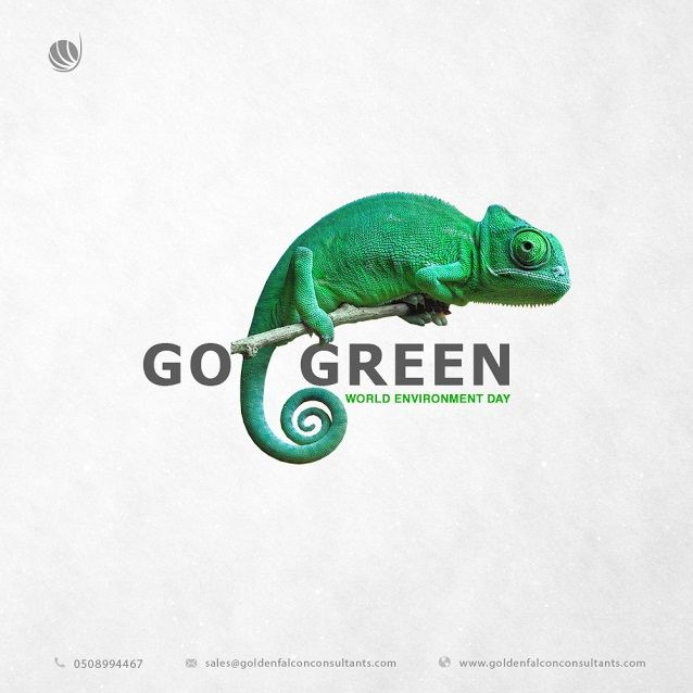 """World Environment Day"" Golden Falcon Consultants  http://goldenfalconconsultants.com/ #GoldenFalconIT #environment #worldenvironmentday #natural #green #gogreen #UAE Golden falcon consultants- Leading Web development and Digital Marketing firm in UAE Services: IT consultants, Branding & Identity, Wed development, Web design, SEO Search Engine Marketing, Social media marketing SMM, Search Engine marketing SEM"