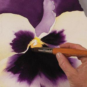 Birgit O'Connor, watercolor flower painting, petals ~ch