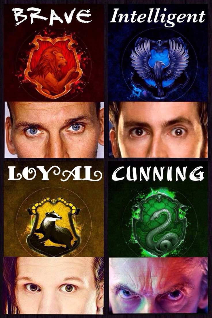 Brave, Intelligent, Loyal, Cunning ~The Doctors