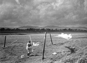 Clothes line, Glencaple, Scotland, 1954.