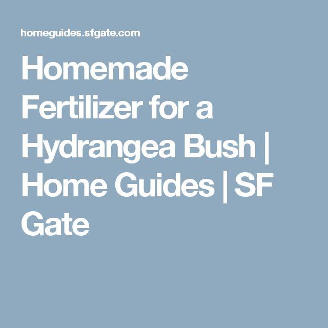 Homemade Fertilizer for a Hydrangea Bush | Home Guides | SF Gate