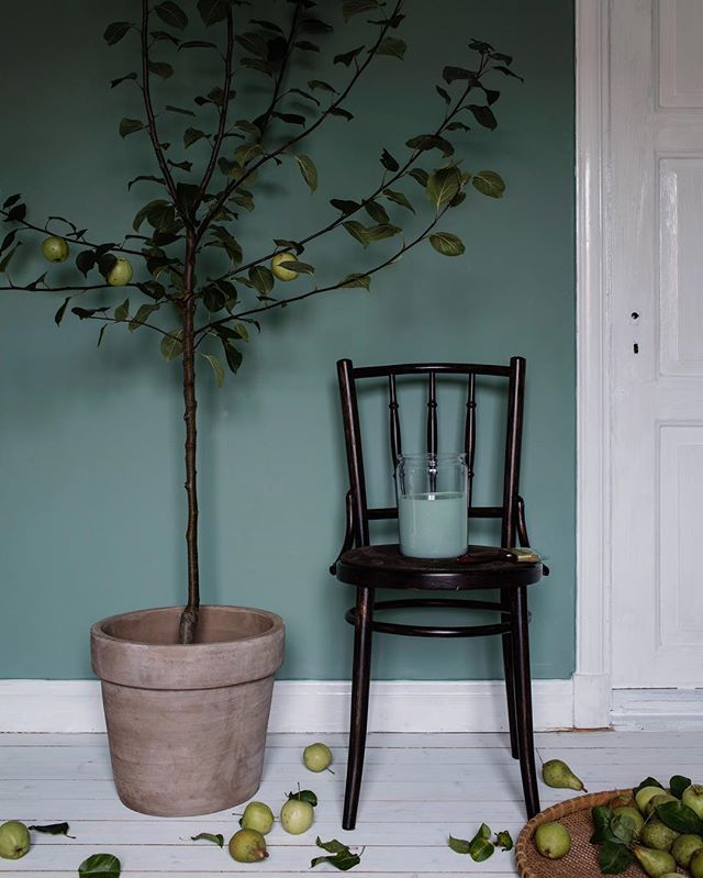 Completely in love with this green Jade colour by @aurosverige Photo: @alicej.se Styling: Me #ekologisk #väggfärg #auro #byggfabriken #jade #giftfri #natural #wallpaint #greenlove #mystyling #work