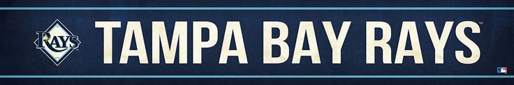 Tampa Bay Rays Street Banner $19.99