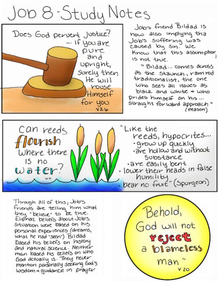 Job Chapter 8 Job bible, Job bible study, Book of job