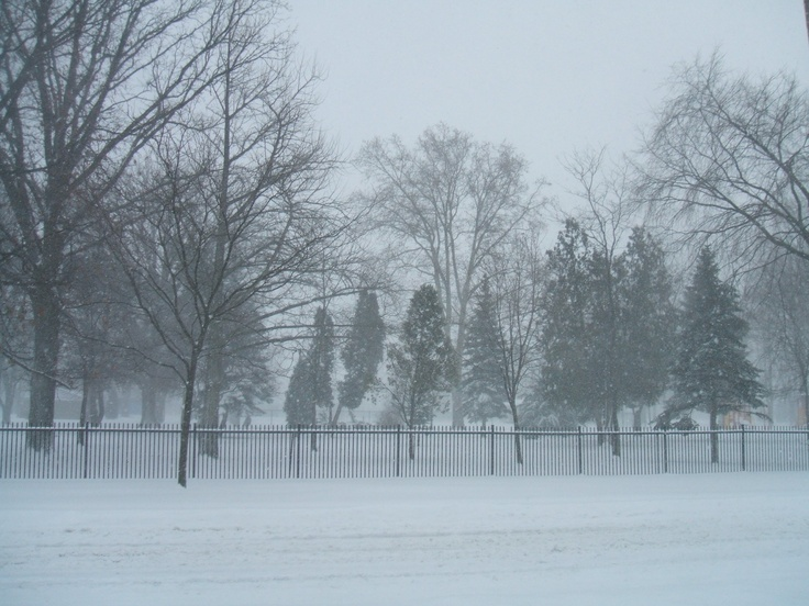Tilbury Memorial Park 2010 before the beautiful fence was replaced with cheap chain link!