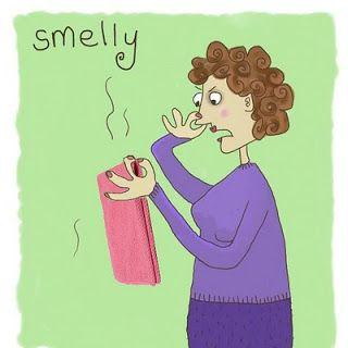 Autumn's Norwex: Smelly Cloths?