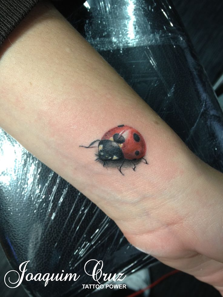 3d Ladybug Tattoo - Hot Girls Wallpaper