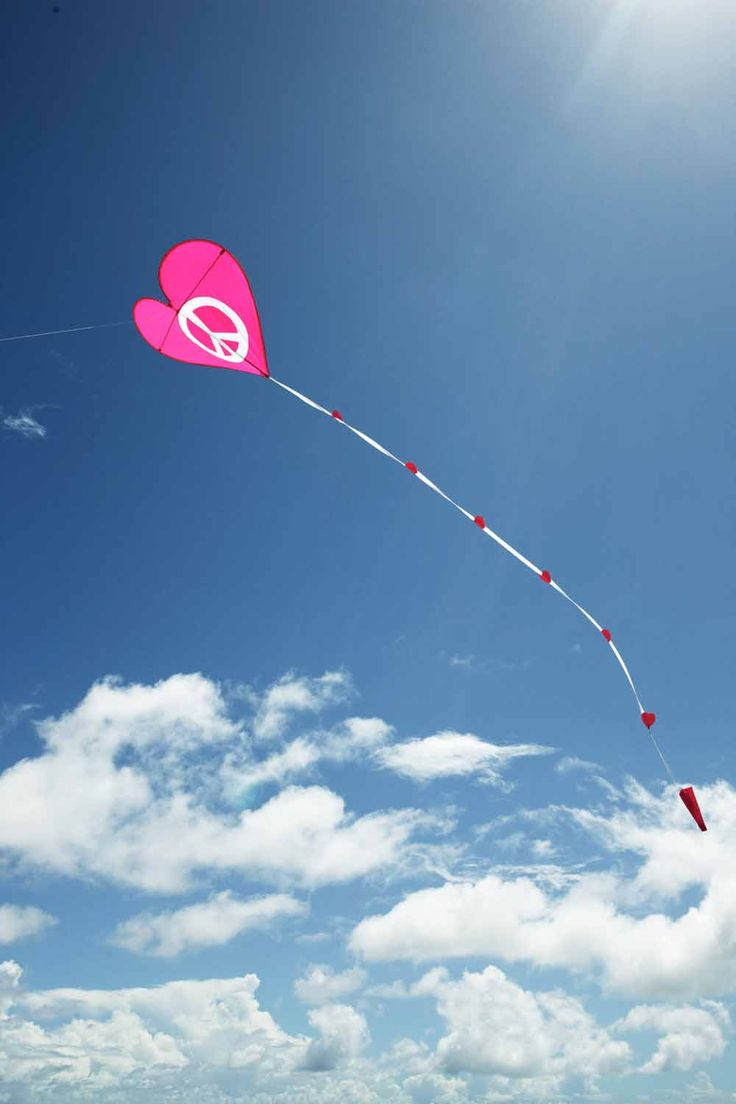 Pink Flying Peace Heart OMGolly