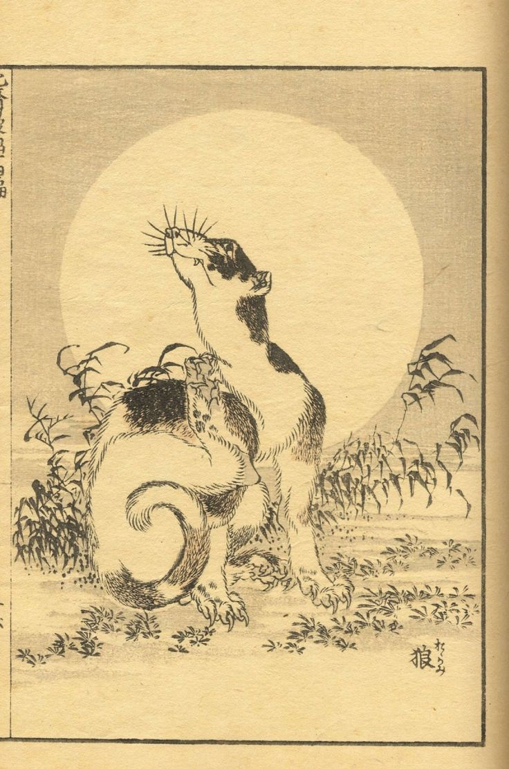 Hokusai Manga 257