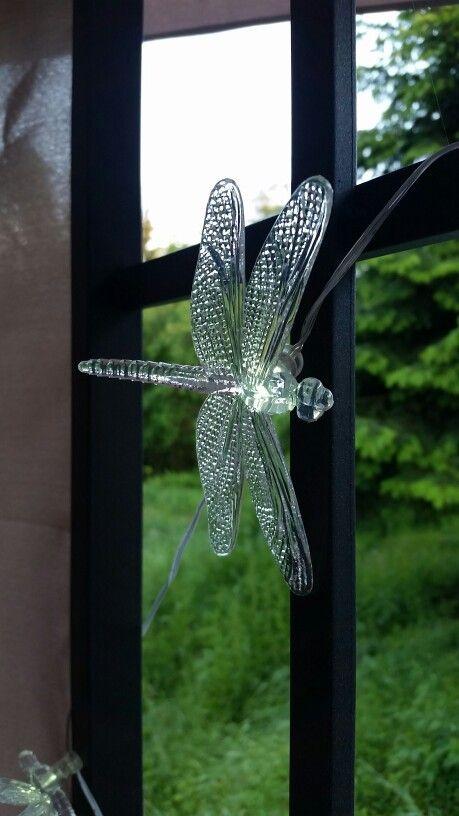 Dragonfly LED-lysslynge ♡