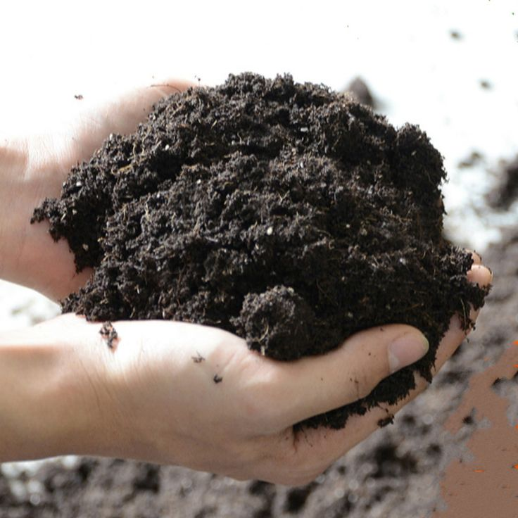 Inspirational  gr los N hrstoff Verbindung D nger Organischer Pflanzliche NAHRUNG pflanzen ton torf Garten Liefert