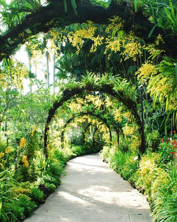 Conde Nast Traveler Singapore Botanic Gardens Luxury Garden Beautiful Gardens