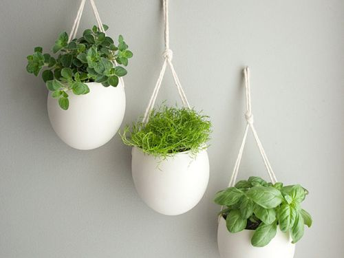 The best pots for an indoor herb garden for the home pinterest gardens hanging herbs and - Indoor herb garden containers ...