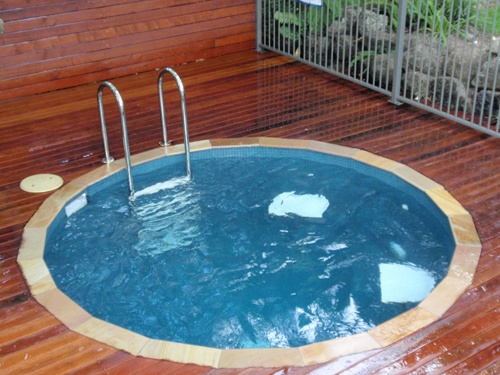 17 best images about plunge pools on pinterest wooden for Garden plunge pool