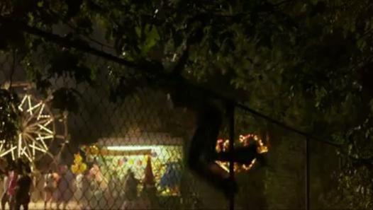 Texas Chainsaw 3D (2013) - Bande Annonce / Trailer [VF-HD] - Vidéo Dailymotion #TexasChainsaw #movie #trailer