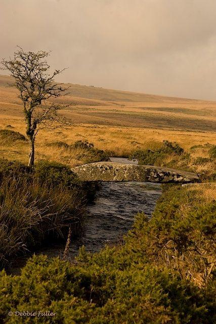 Dartmoor (via Pin by Belinda Roussel on Beloved Britain)